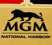 Las Vegas-based MGM Resorts International's first casino-resort in Maryland opened to the public on Thursday night as thousands of eager guests and local residents passed ...