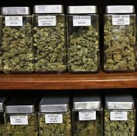 Andrew Jolley, an executive with Nevada Organic Remedies, said it wasn't his job to analyze how the Nevada Department of Taxation graded applications for cannabis dispensary licenses ...