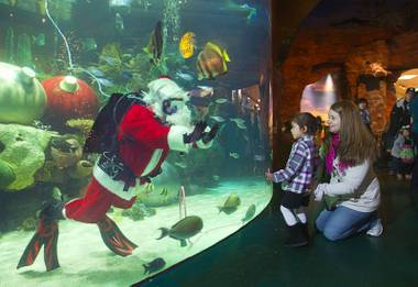 An underwater Santa Claus greets Alexis Libaste, 3, of Henderson, as her mother Ashley looks on at the Silverton Casino Hotel in Las Vegas, Nevada December 8, 2013. The underwater Santa and his helpers greet visitors and take present requests from inside the casino's 117,000-gallon aquarium on weekends in December until Christmas.