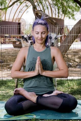 Yoga de chèvre