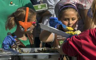 Brownies Avery Lowery, 7, and Khloee Watson, 7, with Troupe 702 help to serve during Gobble Gobble Give at the Llama Lot on Fremont Street on Thursday, Nov 23, 2017. The event is in it's 10th year serving the homeless in Las Vegas a warm and nutritious Thanksgiving meal and more.