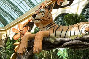 The Autumn display at the Bellagio Conservatory and Botanical Garden, inspired by colors and culture of India, is seen Tuesday Oct. 2, 2019.