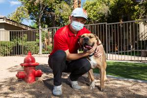 Eric Jeng and Kylo, his adopted 4-year-old Mastiff mix, pose ...