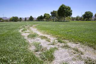 Ruts are shown in a grass field at Mission Hills Park in Henderson Wednesday, Aug. 5, 2020. The damage was caused by someone driving on the field sometime between Monday night and Tuesday morning (Aug.3-4) and caused about $4,000 in damage.