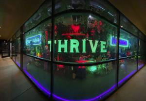 THRIVE Cannibis Marketplace Southern Highlands Opening