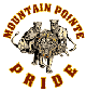 Mountain Pointe (Ariz.)