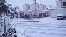 2008 Snowstorm community photos